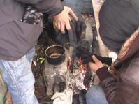 Calais-migrants décembre 2010