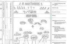 formation NT Ecole du dim 1 - copie.jpg