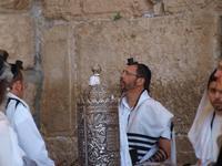 pélé Israel 2013
