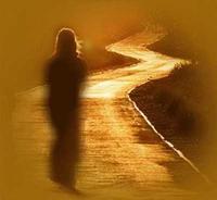 chemin_eclaire