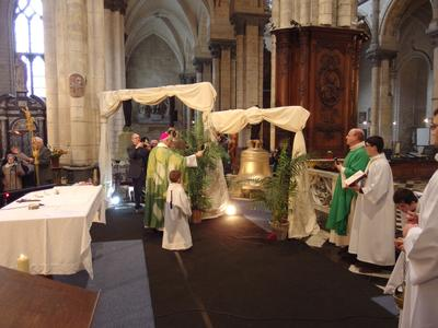 2017-2-26- Benediction cloches cathedrale Saint-Om