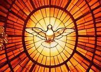vitrail colombe