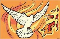 colombe et feu