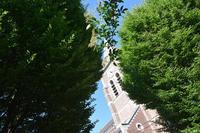 Eglise-St-Piat de dourges