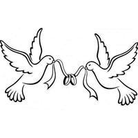 alliances+colombes_LI