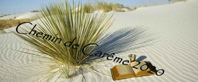desert careme site diocese