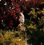 Vierge du jardin