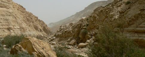 Desert de juda