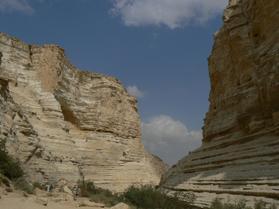 Ce n'est pas immensité de sable, mais rocaille, lieu de vie, dépouillé, mais fertile.