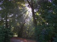 Courset Parc