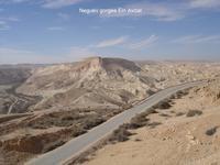 Au désert du Neguev