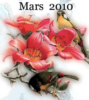 mars-2010.jpg