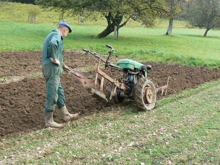 Le temps des semailles - Labourer la terre ...