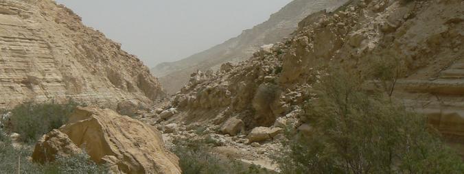 Sur le chemin de Jéricho à Jérusalem